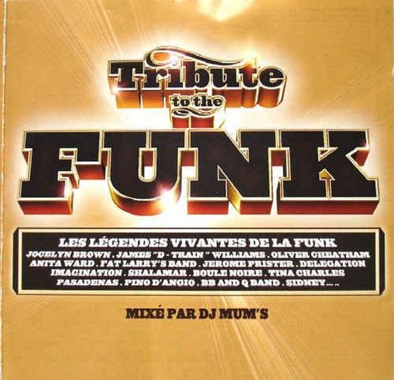 скачать Tribute to the Funk (2003)