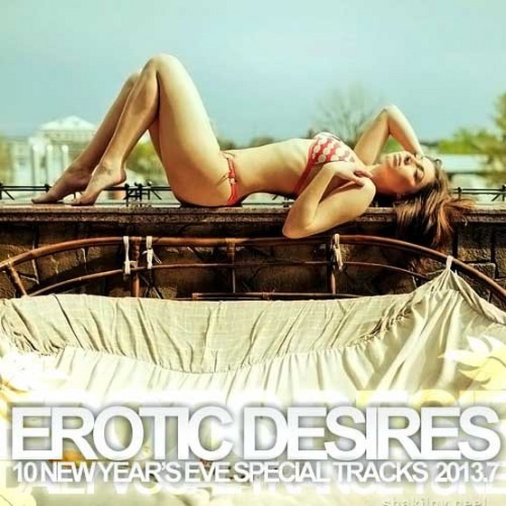 Erotic Desires 7: New Year's Eve Special (2013)