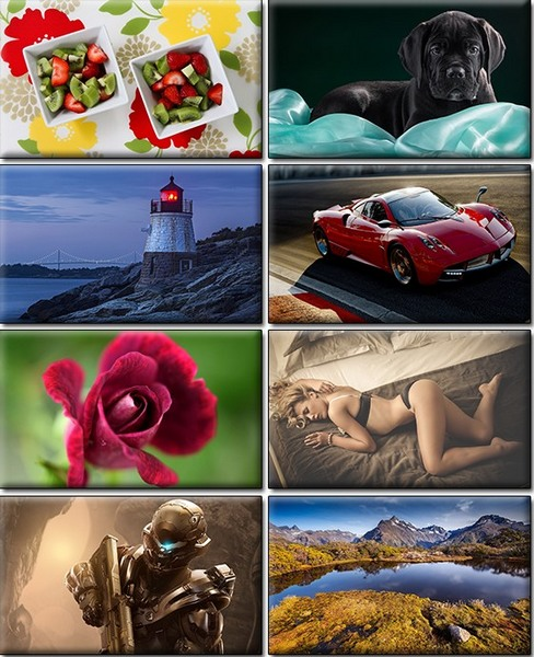 Computer Desktop Wallpapers Collection. www.cwer.ru