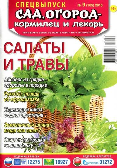 kak-uyti-ot-muzha-alkogolika-i-nachat-novuyu-zhizn