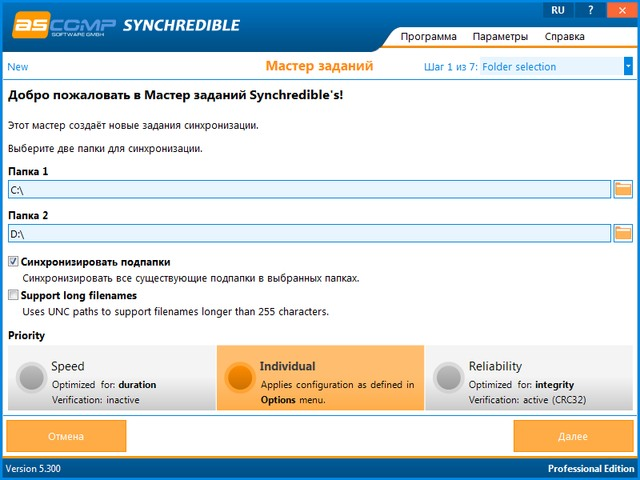 Synchredible Professional Edition 5.300