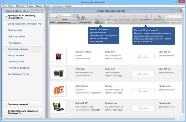 download Kakteen Pflanzen Samen